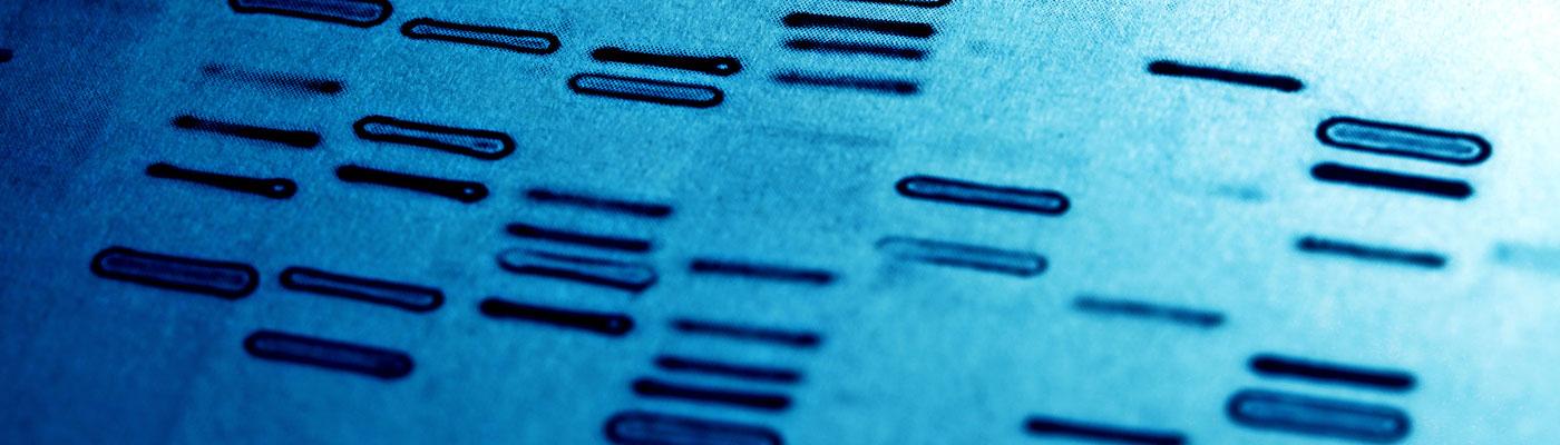 Abstammungsanalysen & Spurenuntersuchungen